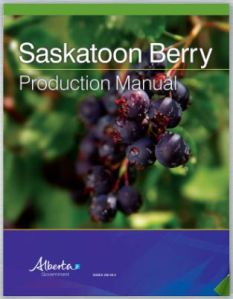 Saskatoon Berry Production Manual