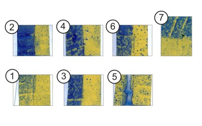 Figure 3 – Water-sensitive papers corresponding to positions in Figure 2. Cards were folded around the stems to face each alley (Cards 1-6) and around the top leaf for surface and underleaf coverage (Card 7). There are some drenches, but no misses.