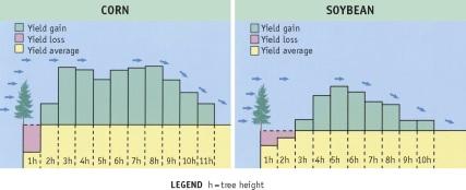 crop yield increase graph