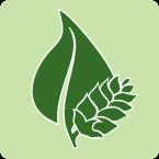 Hop production logo