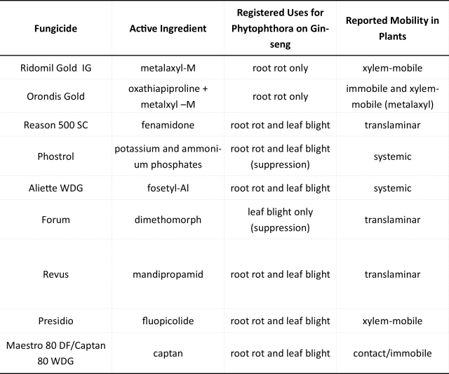Photo of a table showing the registered products for Phytophthora control on ginseng and the mobility of each product within the plant. The fully mobile products are Phostrol and Aliette. The xylem-mobile products are Presidio and Ridomil. Orondis and Captan are not mobile but Orondis contains the xylem-mobile Ridomil. Reason, Forum and Revus are translaminar.